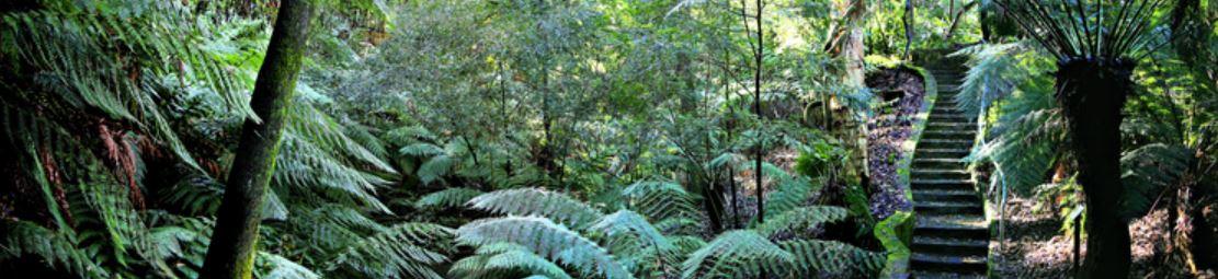 Canberra Gardens Australia Tours