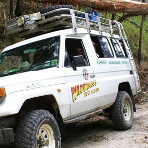 4WD Eco Safari